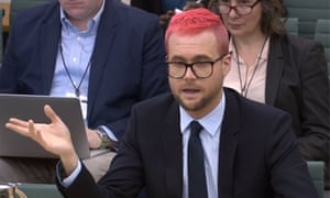 Christopher Wylie at select committee