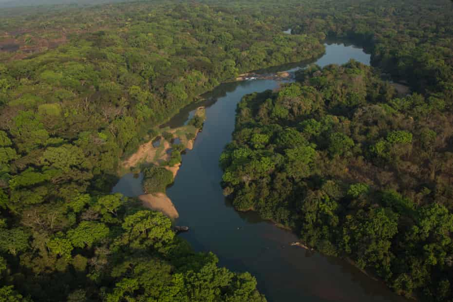 The Chinko reserve in the Central African Republic is almost twice the size of Yellowstone national park in the US.