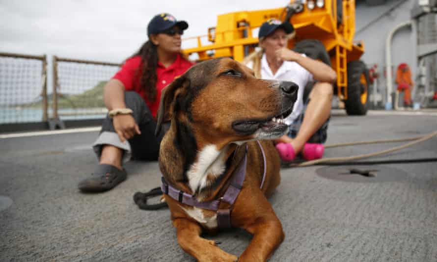 Tasha Fuiava, left, and Jennifer Appel sit with their dog on the deck of the USS Ashland on 30 October.