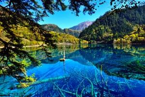 Lake in Jiuzhaigou national park, Sichuan province, China.