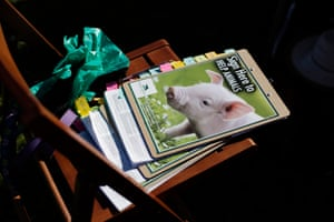 Prevent Cruelty California petitions and leaflets.