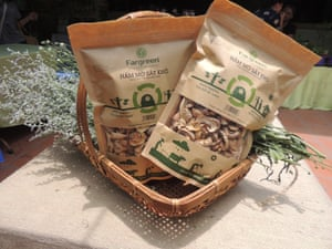 Harvested mushrooms are sold under the Fargreen brand