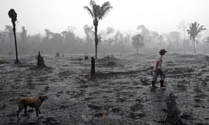Brazilian farmer Helio Lombardo Do Santos walks through a burnt area of the Amazon rainforest, near Porto Velho, Brazil, in August.