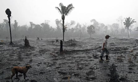 A farmer and his dog in a burnt region of the Amazon rainforest in Rondônia state, Brazil.