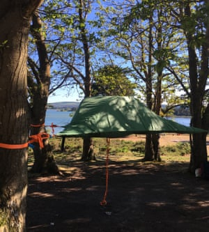 Branching out: tree tents and hammocks are available for campers.