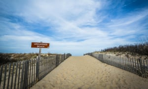 Path to the beach at Cape Henlopen state park, DE, US.