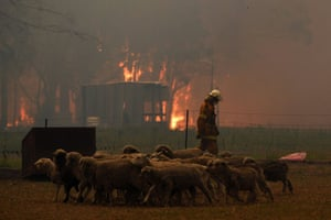 RFS crews protect homes along the Old Hume Highway as the Green Wattle Creek fire threatens a number of communities in the south-west of Sydney