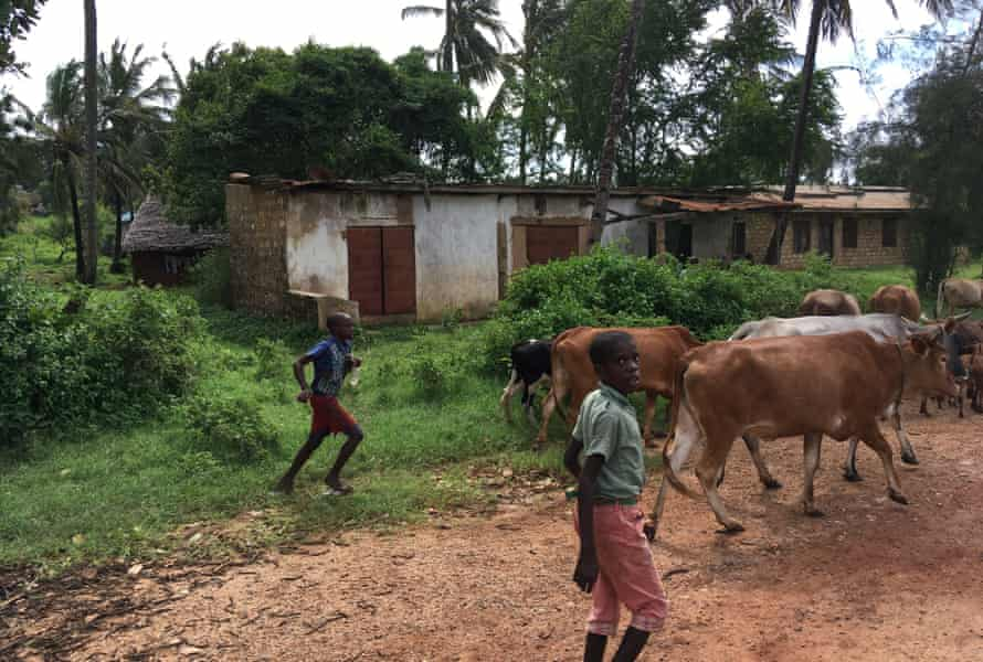 Boys in a rural area of Kenya