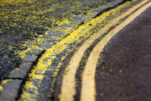 Double yellowNo parking lines sprinkled with fallen laburnum blossom