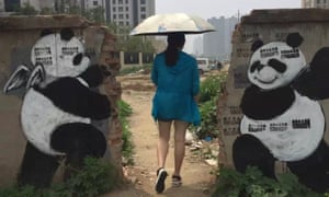 A Banksy-esque portrait of smiling pandas on a crumbling wall in Beijing by renowned Chinese artist Qi Xinghua.