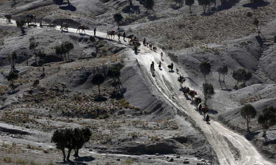 Afghans walk with camels on a road near the border with Pakistan.