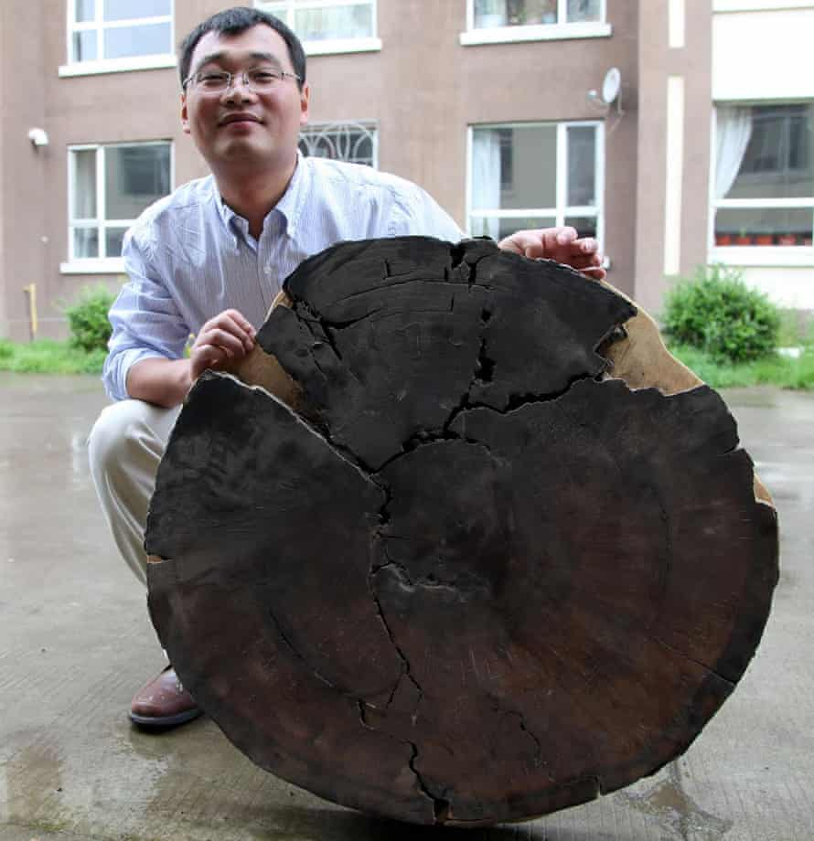 Bo Pan, a Chinese volcanologist from the Institute of Geology in Beijing.