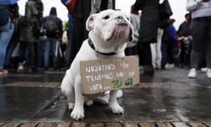 A dog holds a sign that reads 'We do not have voice nor vote... you do' as hundreds demonstrate on the occasion of the global climate strike, in the Bolivar Square of Bogota, Colombia.