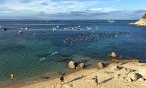 A Vies Braves swimming courses around the Costa Brava coastline