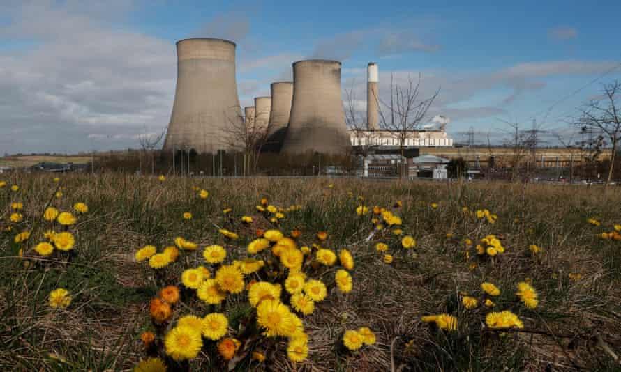 Flowers grow near Ratcliffe-on-Soar power station in Nottinghamshire.