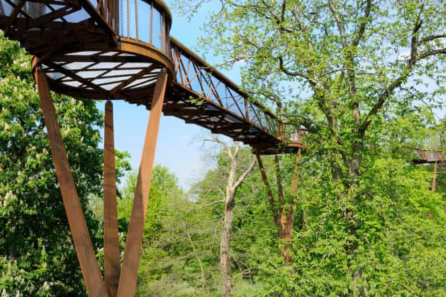 the Treetop Walkway, Kew Gardens