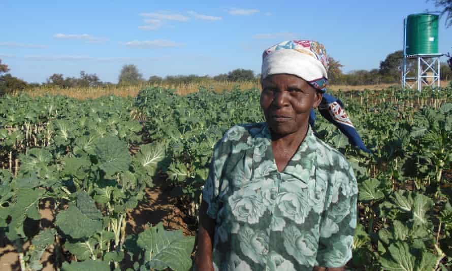 Moddie Msebele