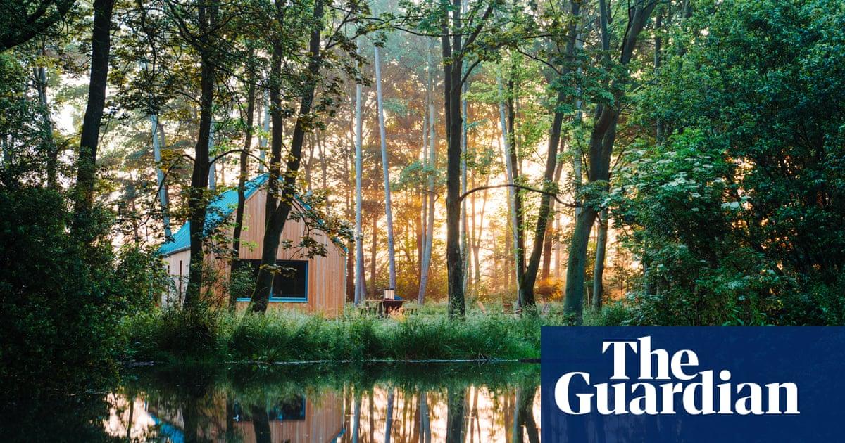 Golden slumbers: 10 glorious woodland retreats for an autumn break