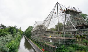 London, England: Experts abseil down the Grade II listed Snowdon Aviary at ZSL London Zoo in Regent's Park to remove the first of 200 steel mesh panels, starting the one-year countdown to the building's summer 2022 rebirth.