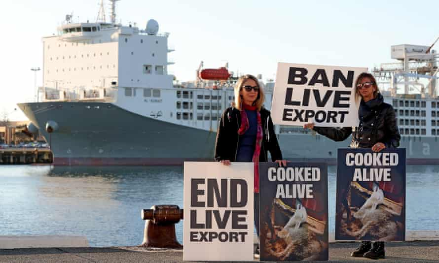 People protest for better animal welfare in Western Australia