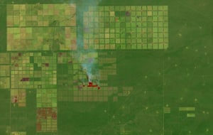 An image of fields and forests in the Salta province of northern Argentina. The image shows fires burning in some sections of the grid, probably lit by land managers trying to clear shrubs and trees to make room for livestock, timber, or crops.