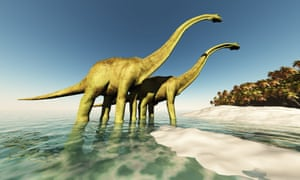 Sauropod species such as Diplodocus were already in decline long before the asteroid strike that doomed them to extinction, a new study shows.
