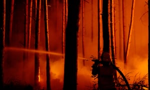 Firefighters tackle a blaze fight in Klausdorf 50kms south-west of Berlin.