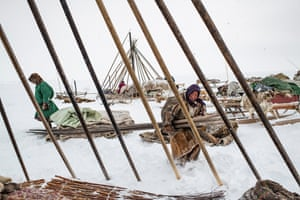 The Nenets people building chums, conical-shaped tents made of reindeer skins laid over a skeleton of long wooden poles, April 2018.