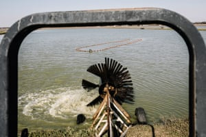 An aerator spins in a catfish pond at Jubilee Farms.