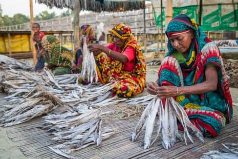 Women work at a dry fish yard in the Bangladeshi coastal resort of Cox's Bazar