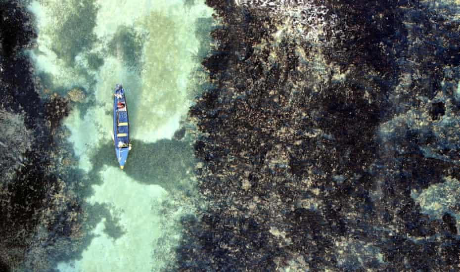 White River fish sanctuary wardens patrol through the reef of the sanctuary's no-take zone