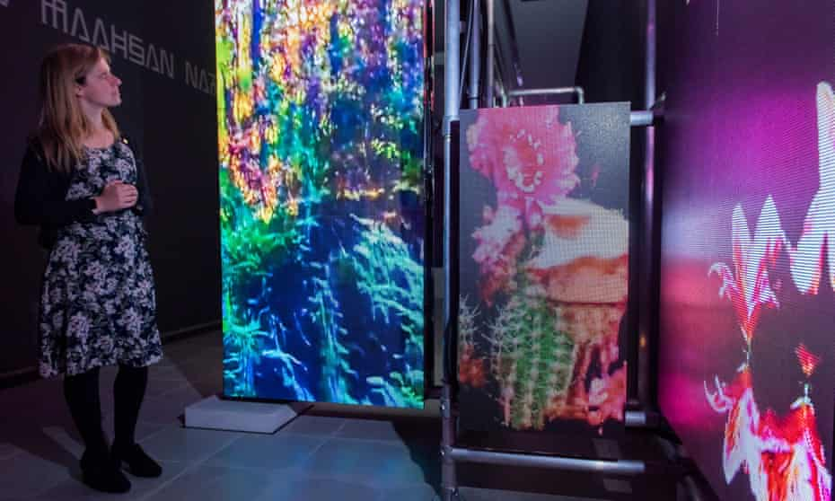 Hito Steyerl's augmented reality installation, Power Plants.