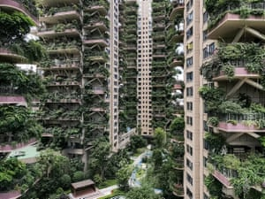 Apartments are covered with plants at a residential community in Chengdu.