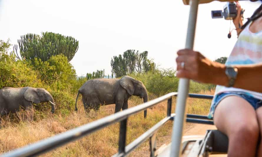 Tourists in jeep filming a herd of elephants crossing the road in Queen Elizabeth National Park, Uganda