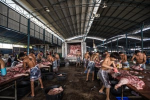 Slaughterhouse workers butchering pigs in Thailand