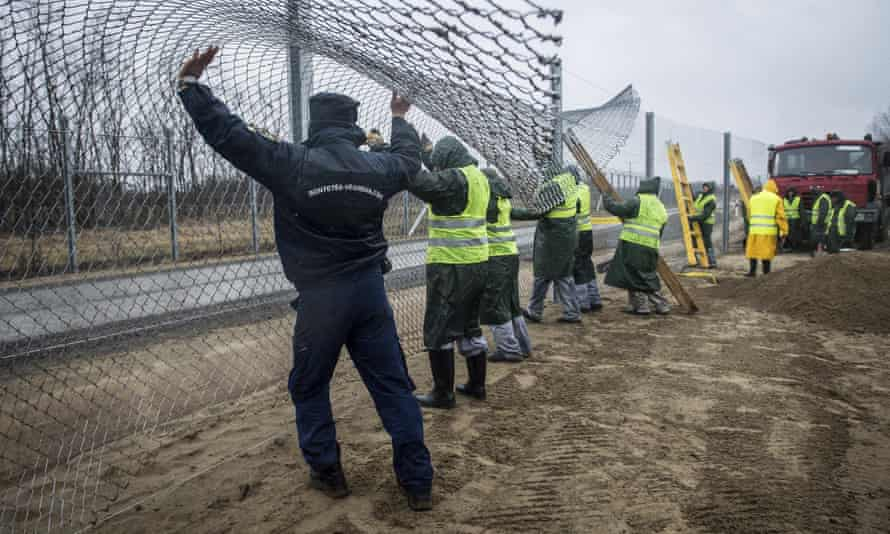 Building a second fence on the border between Hungary and Serbia near Kelebia.