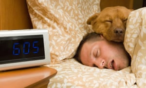 Photograph: Man and his dog comfortably sleeping in.