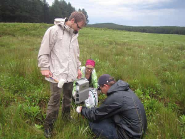 Researchers set up audio survey equipment at one of the grassland sites. They surveyed the frogs through the songs of males.