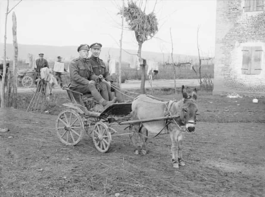 Two Gunners in the Royal Field Artillery in a Donkey Cart, Asiago Front c. June 1918, photographed by Ernest Brooks