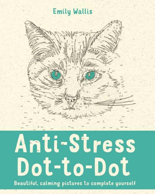 A dot-to-dot book