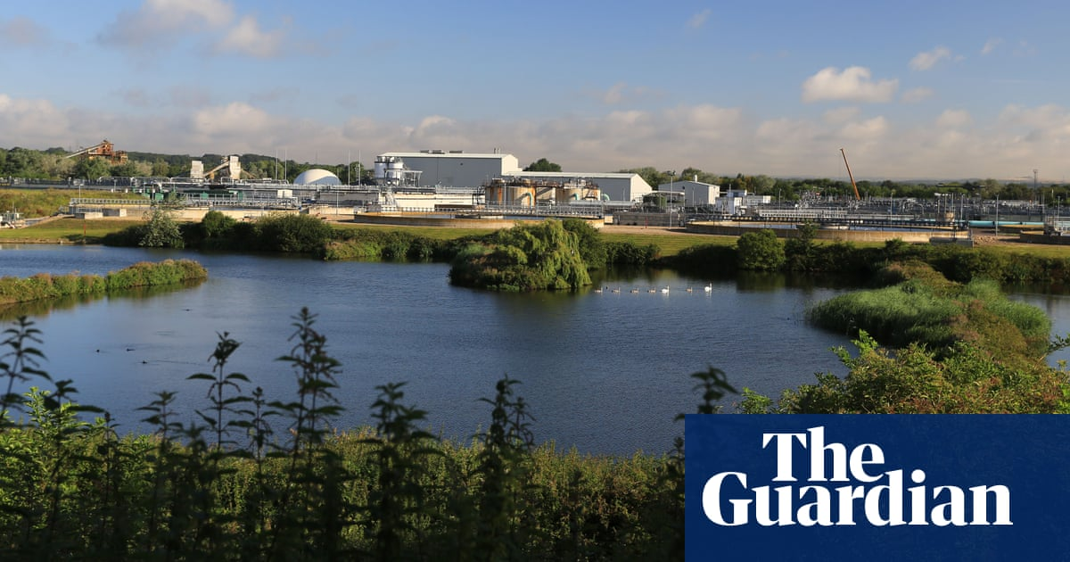 'The sea was milky white': how the Southern Water sewage scandal unfolded
