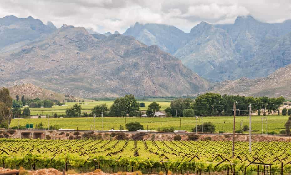 Vineyards and mountains in the Hex valley.