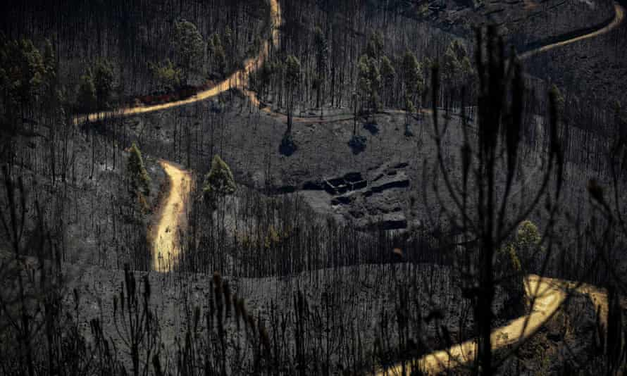 A road meanders through areas affected by a wildfire about 20 miles from Pedrógão Grande.
