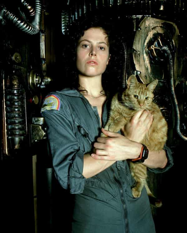 Sigourney Weaver as Ellen Ripley with Jones the ship's cat in the original Alien (1979).
