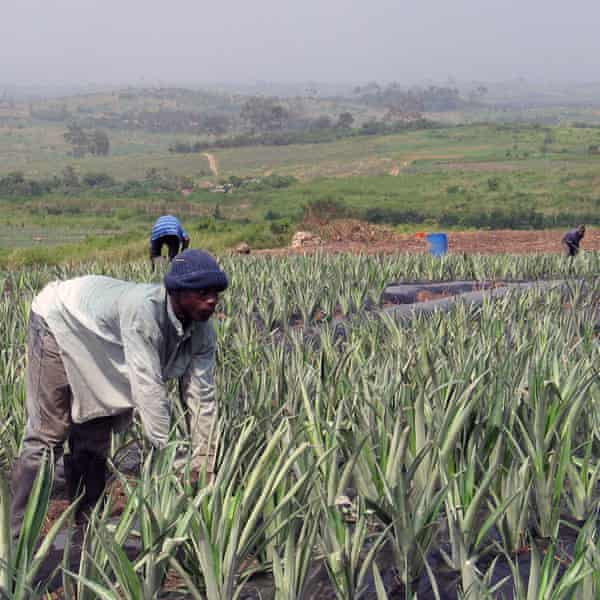 In 2014, Oxfam American supported a successful campaign in Ghana to invest oil revenues into smallholder farmers.