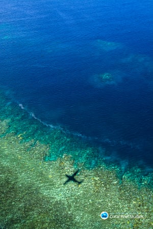 An aerial view of the bleaching between Cairns and Townsville