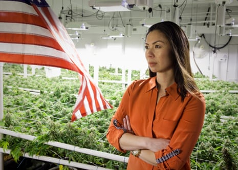Kristi Lee Kelly, executive director of Marijuana Industry Group, Denver, Colorado, in front of marijuana plants