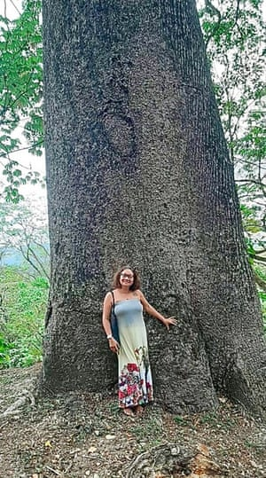 A visitor to Yerette stands by the giant silk cotton tree for scale.