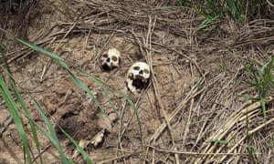 Human skulls believed to belong to victims of fighting between the government army and the Kamuina Nsapu militia are seen on the roadside near Kananga, the capital of Kasai province in the Democratic Republic of Congo.