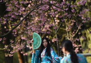 Tourists take photos with cherry blossoms in Wuhan, China